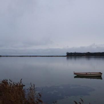 Stilhed ved Thurø rev
