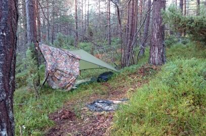 Friluftsliv i Skoven